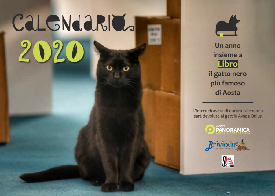 Calendario Libro - Gatto Aosta