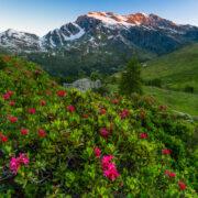 Calendario Valle d'Aosta 2022 (5)